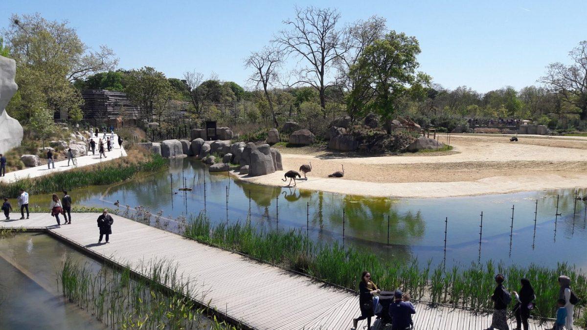 visite zoo vincennes