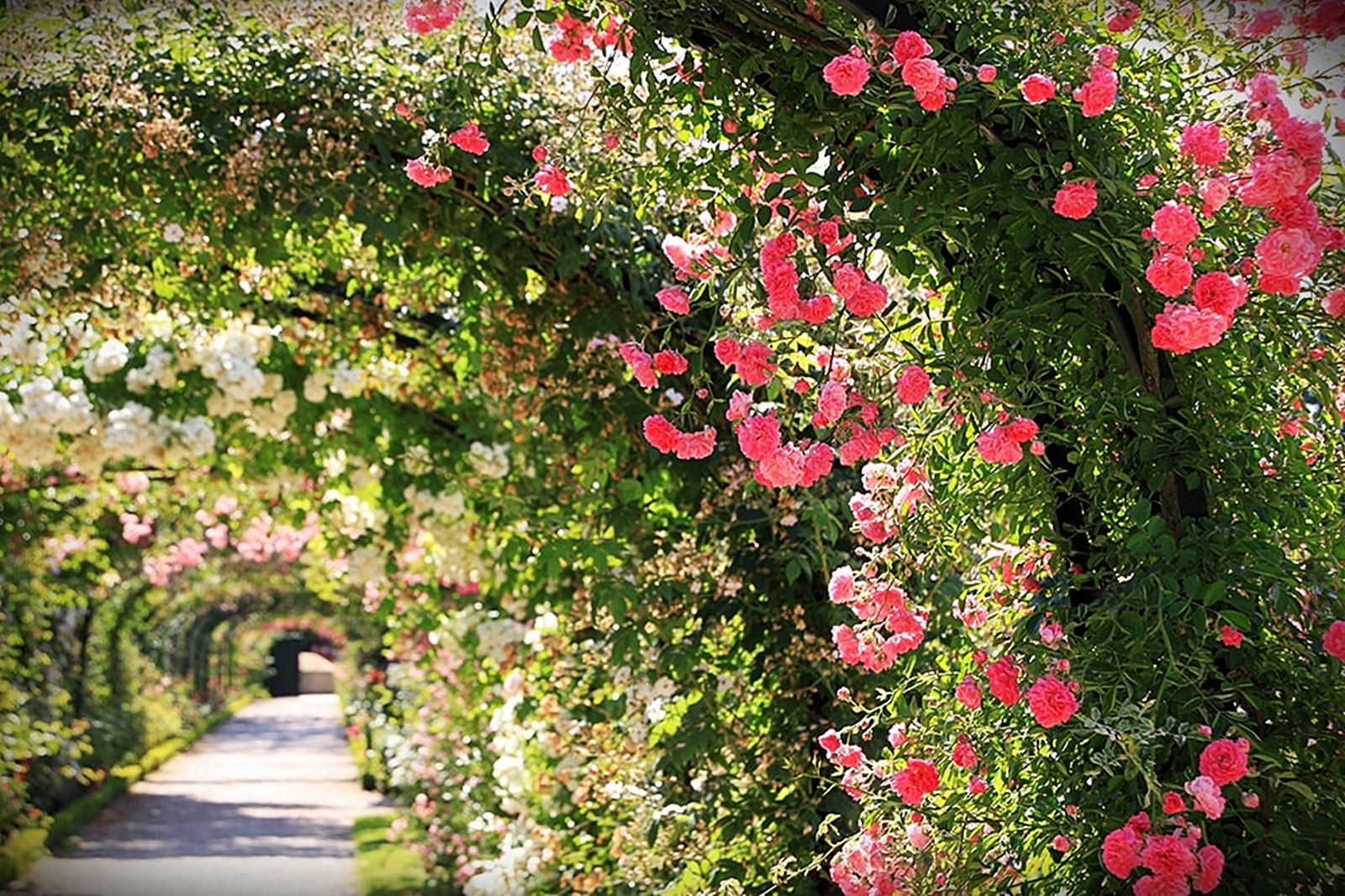Que faire à L'Haÿ-les-Roses ?