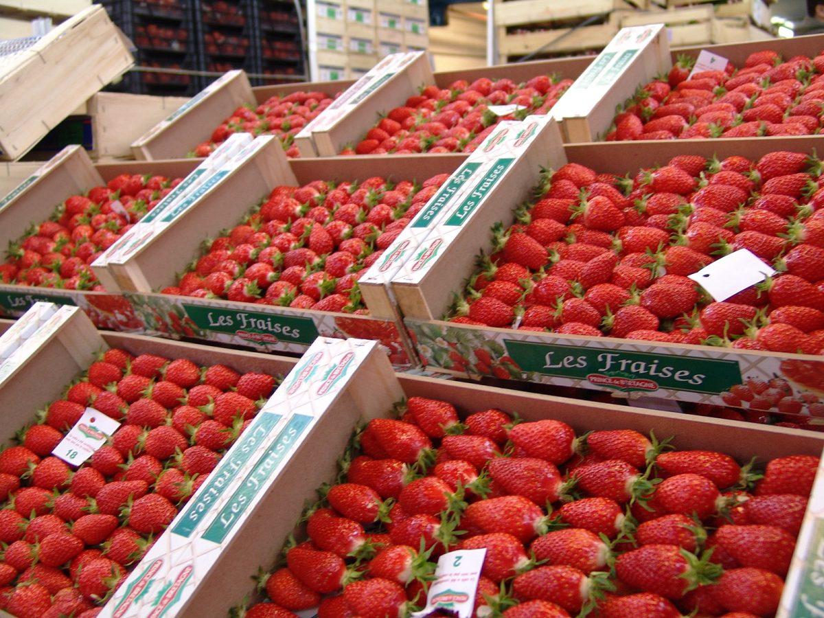 fruits fraises marche rungis