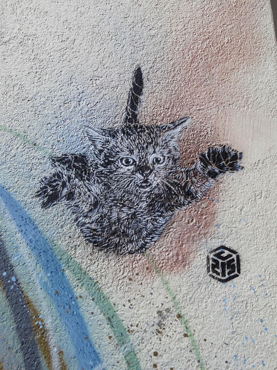 oeuvre street art c215 vitry sur seine