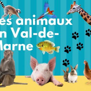 Où voir des animaux en Val-de-Marne ?