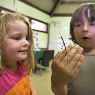 enfants maison nature base loisirs creteil