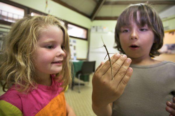 Enfants à la Maison Nature de la base de loisirs de Créteil