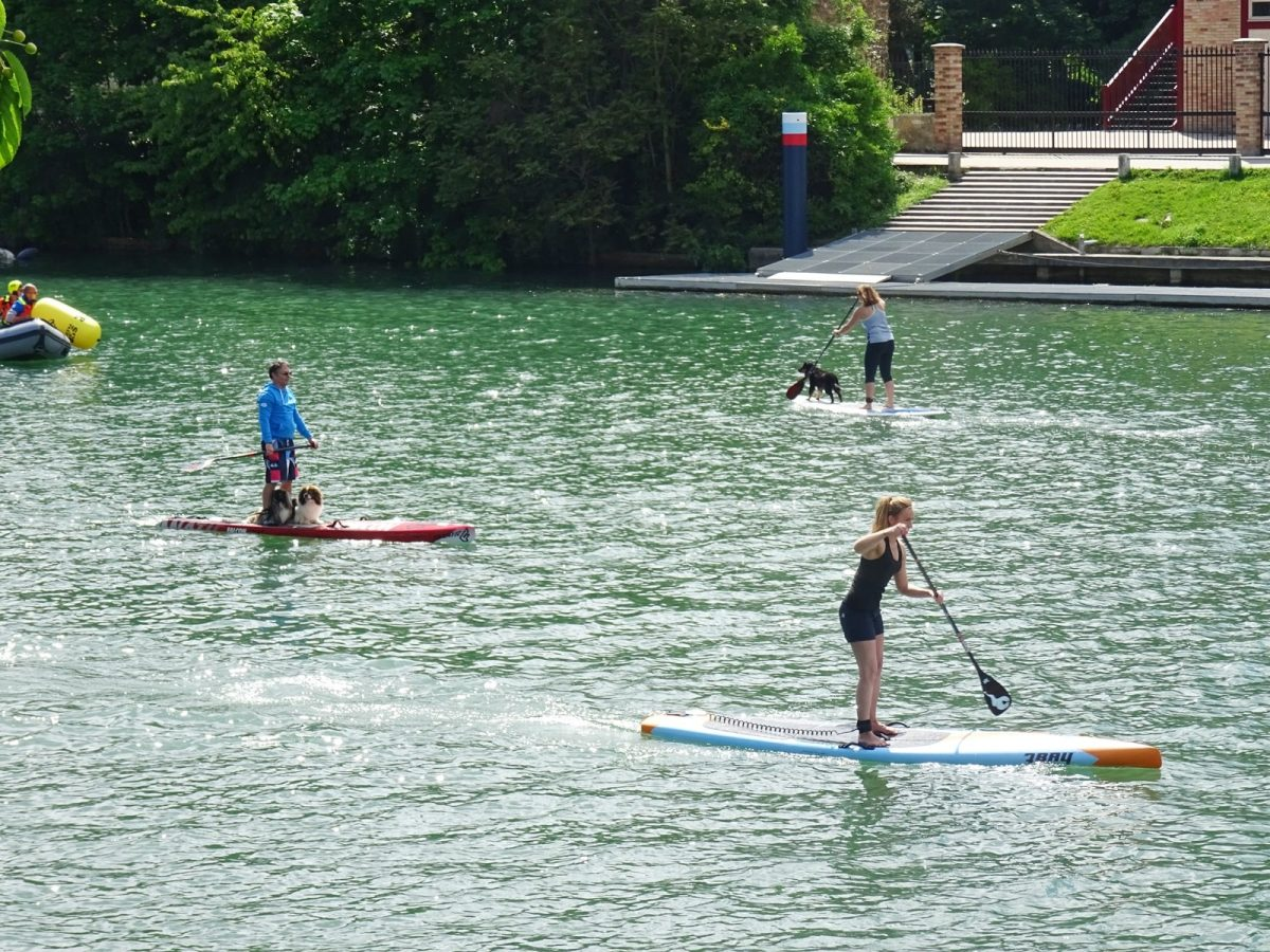 stand up paddle joinville le pont