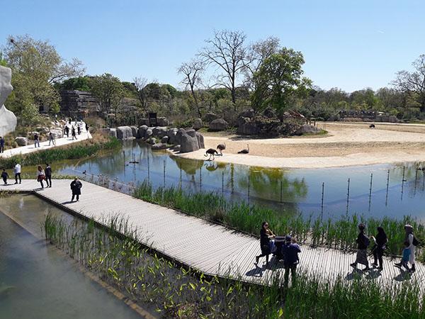 Visite du Parc zoologique de Paris à Vincennes