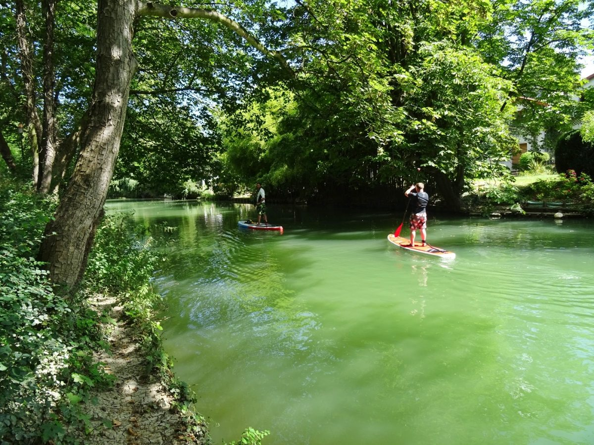stand up paddle bras chapitre