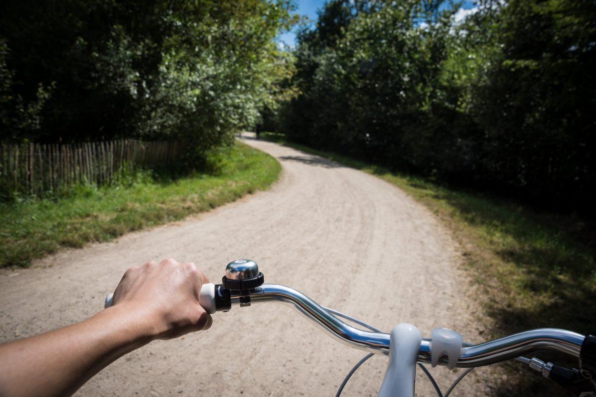 Balade à vélo dans la forêt Notre-dame