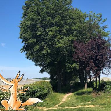 Jeu de piste numérique du Sentier d'interprétation agricole du Plateau Briard