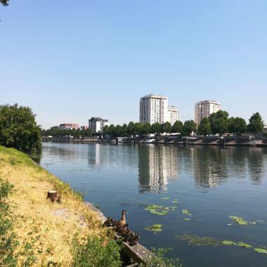 L'été sur les berges de Seine