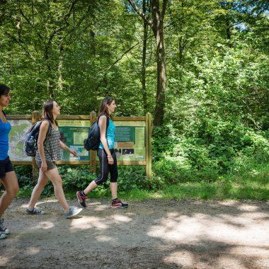 Micro-aventures en Val-de-Marne