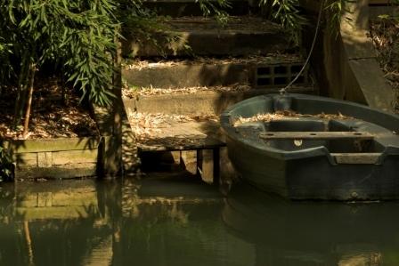CP5-barque