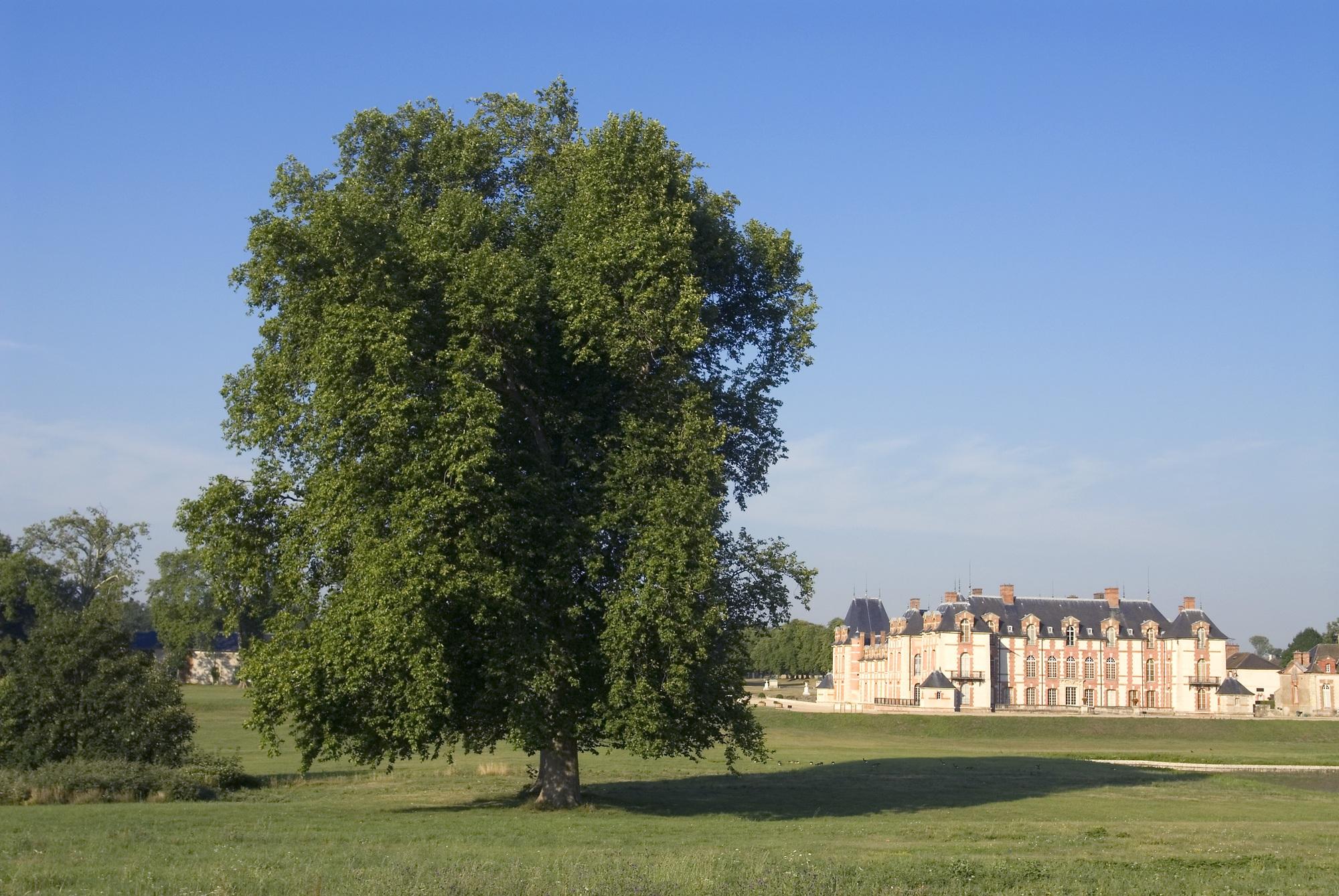 Chateau-Grosbois–35–01