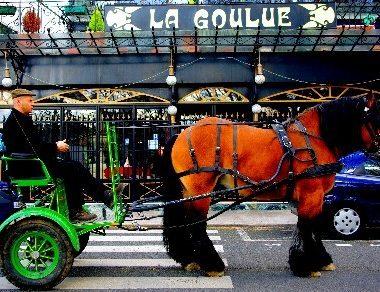 PROMENADE EN CALECHE : GREEN HORSE