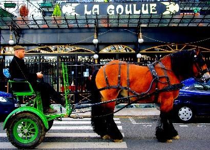 Green-horse