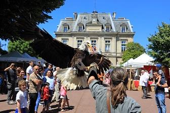Medievales-rapaces-credit-Ville-de-Nogent-sur-Marne