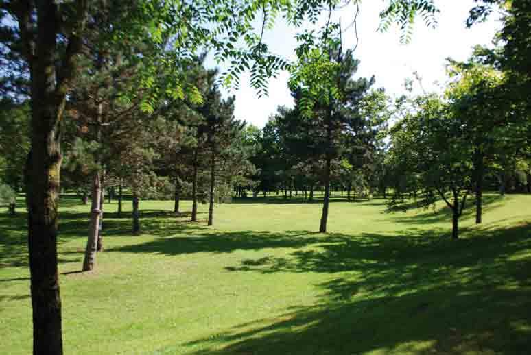 Parc-du-Tremblay