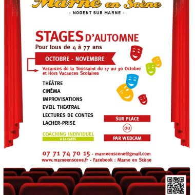 STAGE DE THEATRE-CINEMA-IMPROVISATIONS – Marne en Scène