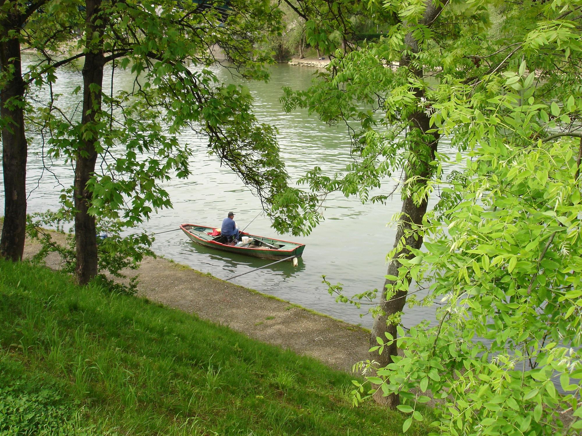 barque–1-