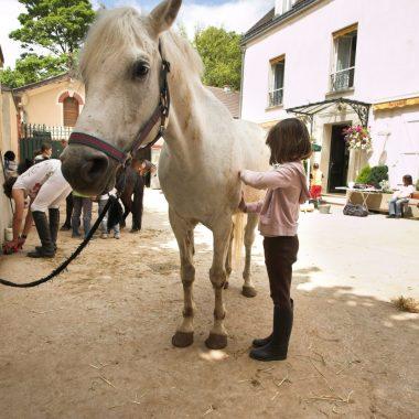 Stages d'équitation des Vacances Scolaires aux Ecuries de Condé