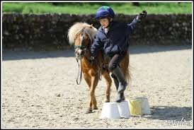 Stages d'équitation des Congés Scolaires au Poneyland de Thiais