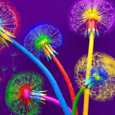 Etre Vivant : Fertilisons les Imaginaires !