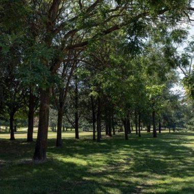 Le parc du Tremblay à Champigny