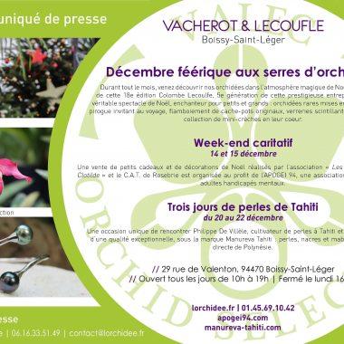 Exposition le Noël des Orchidées Vacherot et Lecoufle