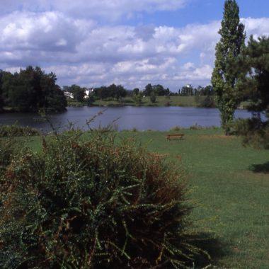 Sortie Nature LPO – Découverte des Hirondelles à Choisy-le-Roi