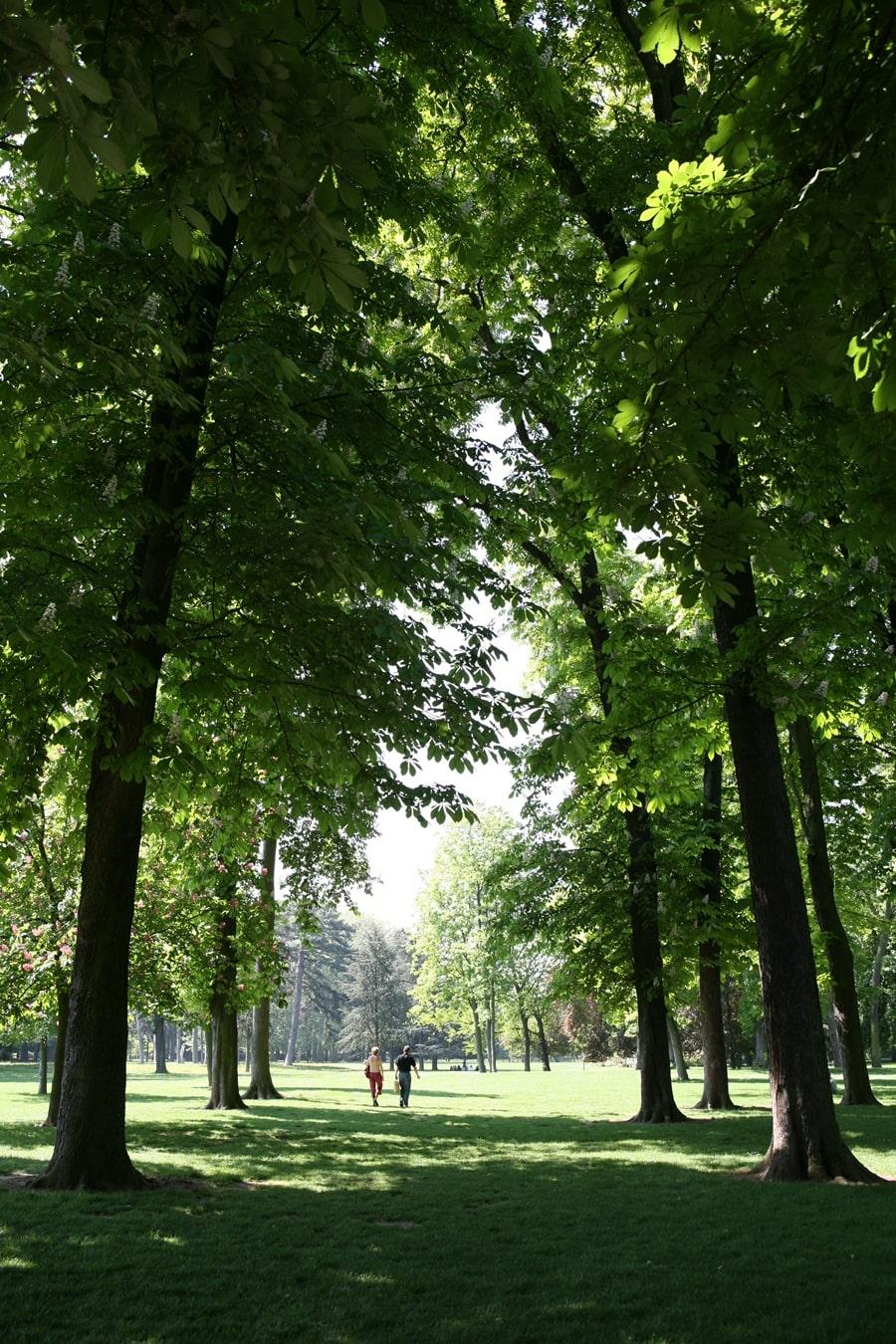 parc-roseraie-3