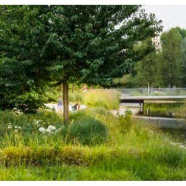 Parcs et jardins de Boulogne-Billancourt : mettez-vous au vert et au bleu ! – Balade virtuelle