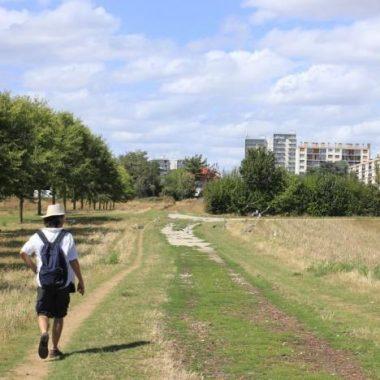 Paysages du Val-de-Marne : randonnée de la Bièvre à l'Orge