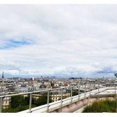 La plantation du  safran sur le toit de l'opéra Bastille
