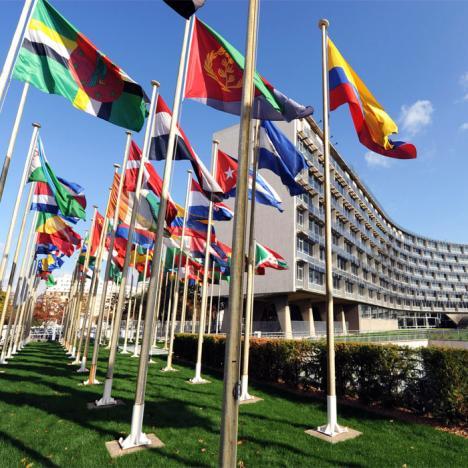 Dans les coulisses de l'UNESCO